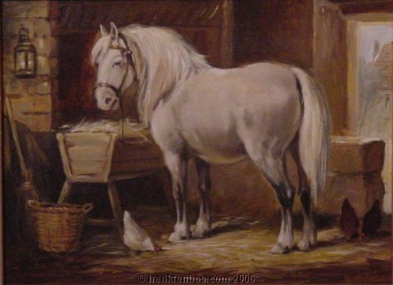 paard_op_stal.jpg