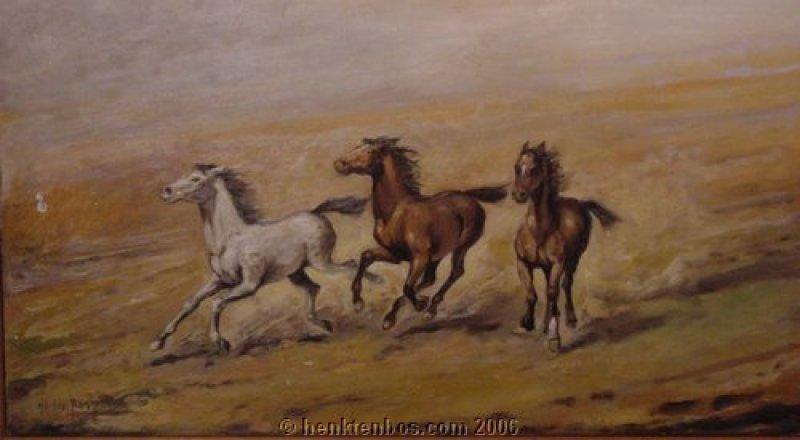 wilde_paarden